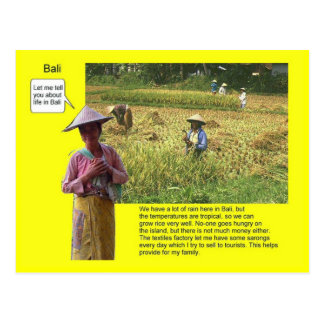 Geography, Social Studies, Life in Bali Postcard