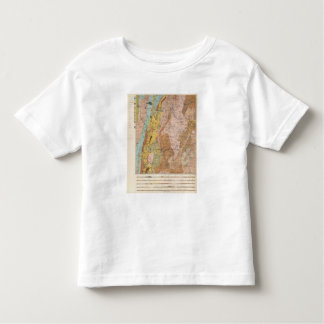 Geological Map of New Hampshire 2 Toddler T-Shirt
