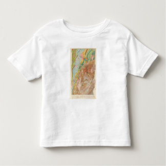 Geological Map of New Hampshire Toddler T-Shirt