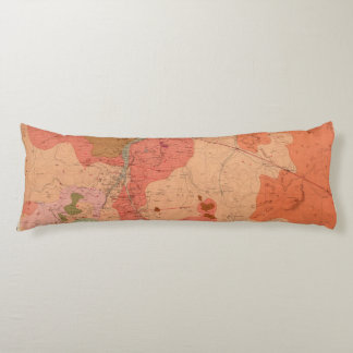 Geological Map of the Washoe District Body Cushion