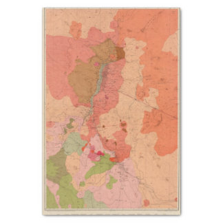 Geological Map of the Washoe District Tissue Paper