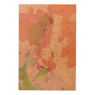 Geological Map of the Washoe District Wood Wall Decor