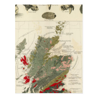 Geological, palaeontological map British Islands Postcard