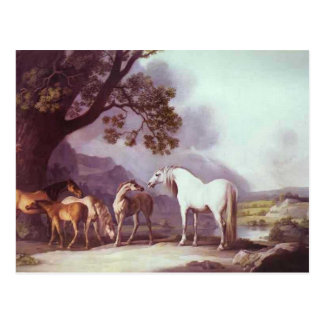 George Stubbs- Mares and Foals in a Landscape Postcard