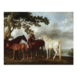 George Stubbs-Mares and Foals in a River Landscape Postcard