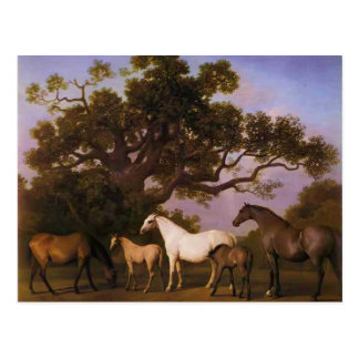 George Stubbs- Mares and Foals under an Oak Tree Postcard