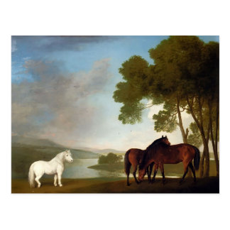George Stubbs- Two Bay Mares And a Grey Pony Postcard