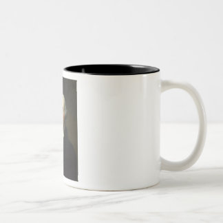 George Washington Mug
