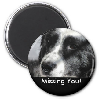 Georgia April 5 2009 012, Missing You! 6 Cm Round Magnet