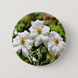 Georgia Cherokee Rose 2 6 Cm Round Badge