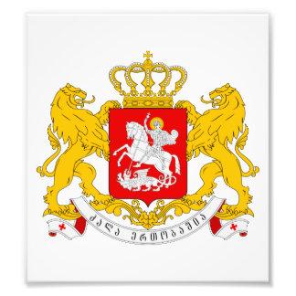 Georgia Coat Of Arms Photo Print