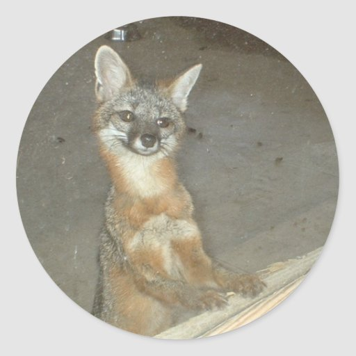 Georgia Fox Sticker