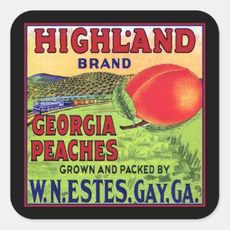 Georgia Peaches Square Sticker