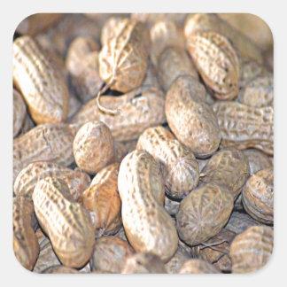 Georgia Peanut Sticker