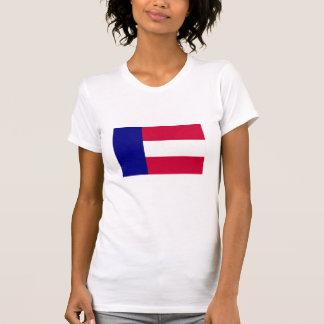 Georgia state flag 1879 shirts