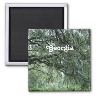 Georgia Trees Square Magnet