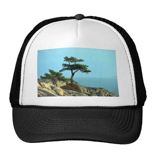 Georgian Bay Shoreline, Lake Huron, Ontario, Canad Hats