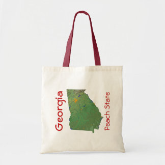Georgian Map Bag