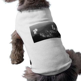 Geothermal instalations sleeveless dog shirt