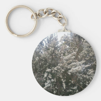 Geraldton Wax Flower Basic Round Button Key Ring