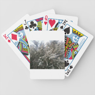 Geraldton Wax Flower Bicycle Poker Deck