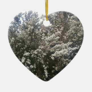 Geraldton Wax Flower Ceramic Heart Decoration