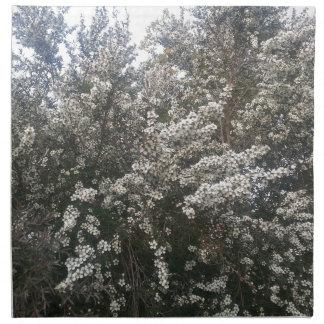 Geraldton Wax Flower Cloth Napkin