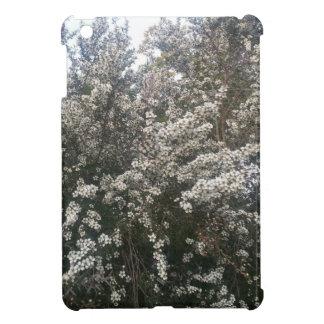 Geraldton Wax Flower iPad Mini Covers