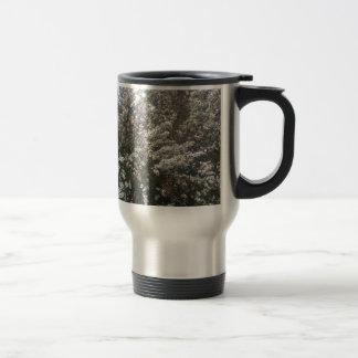 Geraldton Wax Flower Stainless Steel Travel Mug