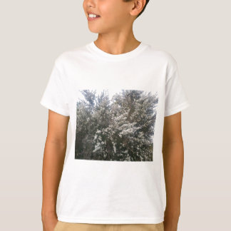 Geraldton Wax Flower T-shirts