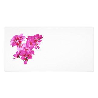 Geranium Heart Photo Cards
