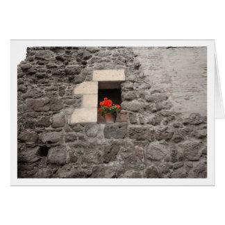Geranium in Window Card
