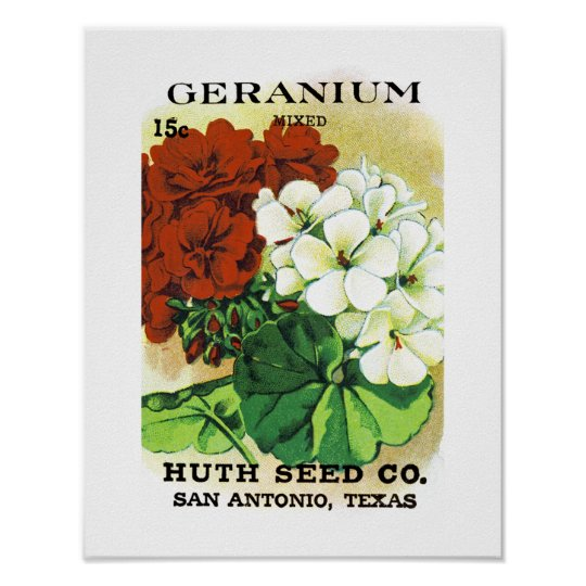 Geranium Seed Packet Label Poster