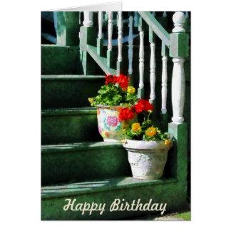 Geraniums and Pansies on Steps - Birthday Greeting Card