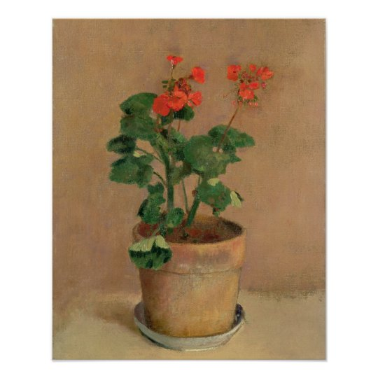 Geraniums in a Pot, c.1905 (oil on canvas)