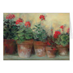 Geraniums in Pots Greeting Cards