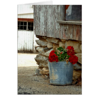 Geraniums on the farm card