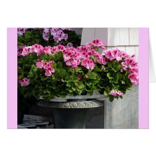 Geraniums Planter Card