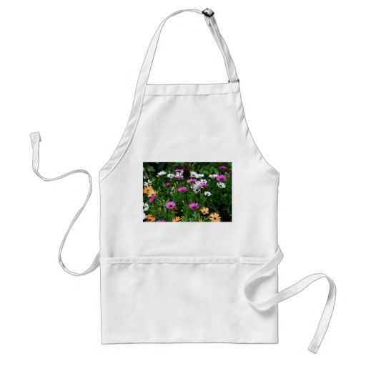 gerber daisies field multi colored flower aprons