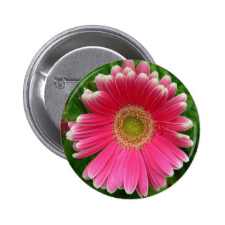 Gerber Daisies Pink Flower Nature 6 Cm Round Badge