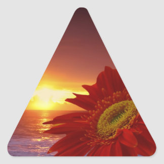 Gerber Daisy and sunset Triangle Sticker