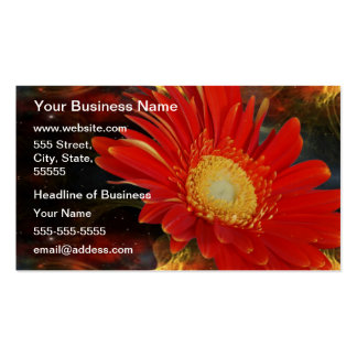 Gerber Daisy Double-Sided Standard Business Cards (Pack Of 100)