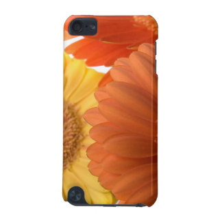 Gerber Daisy iPod Touch (5th Generation) Covers