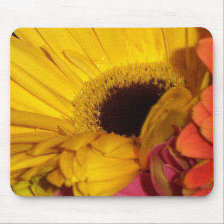 gerber daisy flowers mouse pad