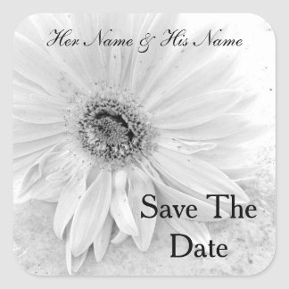 Gerber Daisy In Black And White Save The Date Stickers