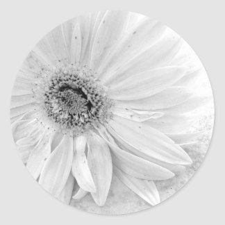 Gerber Daisy Save The Date Round Sticker