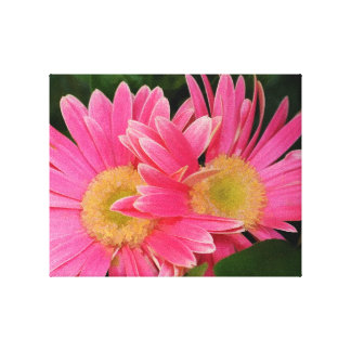 GERBER DAISY WRAP CANVAS STRETCHED CANVAS PRINT