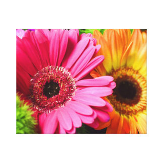 GERBER DAISY WRAPPED CANVAS CANVAS PRINTS