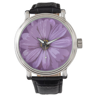 Gerbera Asteraceae - Watch