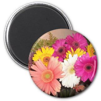 Gerbera Daisies 6 Cm Round Magnet